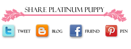Share Platinum Puppy